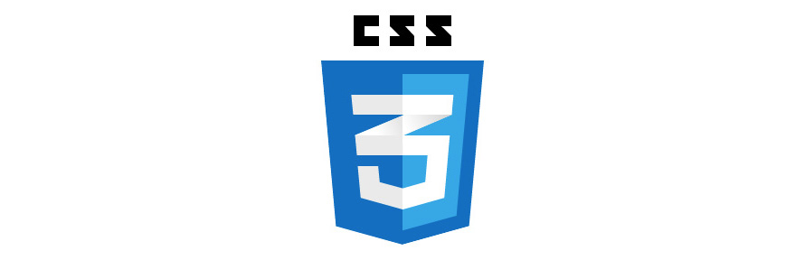 css3 logo